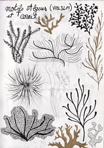 motifs algues pour illustration roman de jules verne